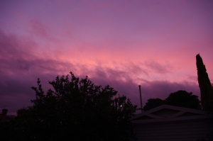 Sunset from my house in Melbourne