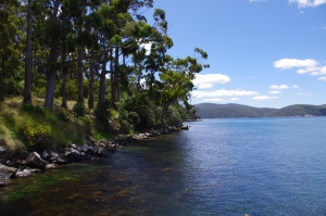 Port Arthur's Bay