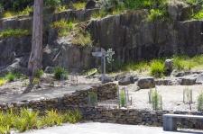 Cemetery, Port Arthur
