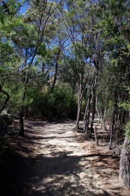 Walking to Wineglass Bay