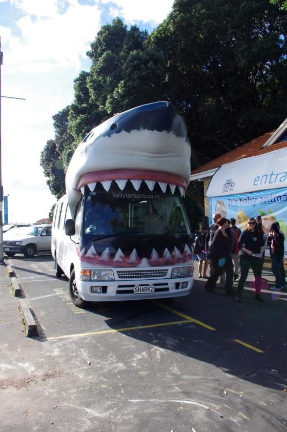 Bus to the Kelly Tarlton's underwater world
