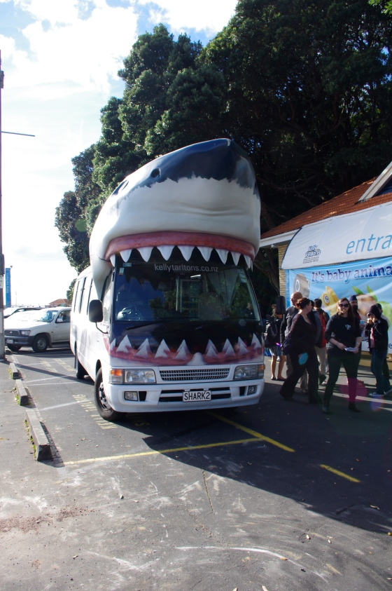 Bus to the Kelly Tarlton's underwater world
